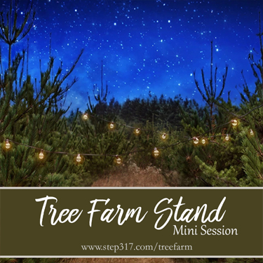Step317_2020_TreeFarm_Sq_Small