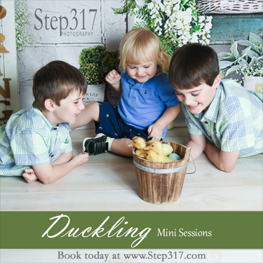 Step317_2021_Duckling_Square_Small